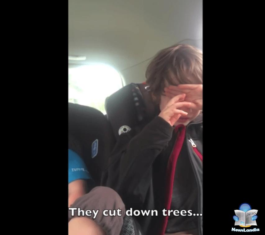 reazione bambino maltrattamento ambiente newslandia they cut down trees