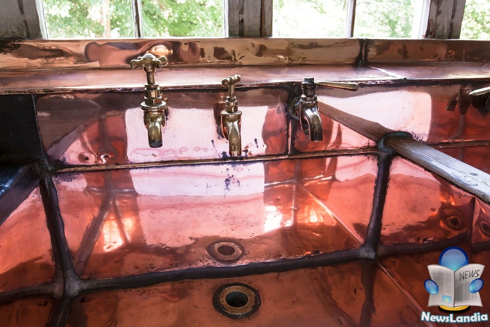 Cose più Sporche del wc: Lavandino della Cucina
