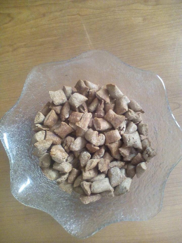 Biscotti per cani e gatti al tonno fatti in casa
