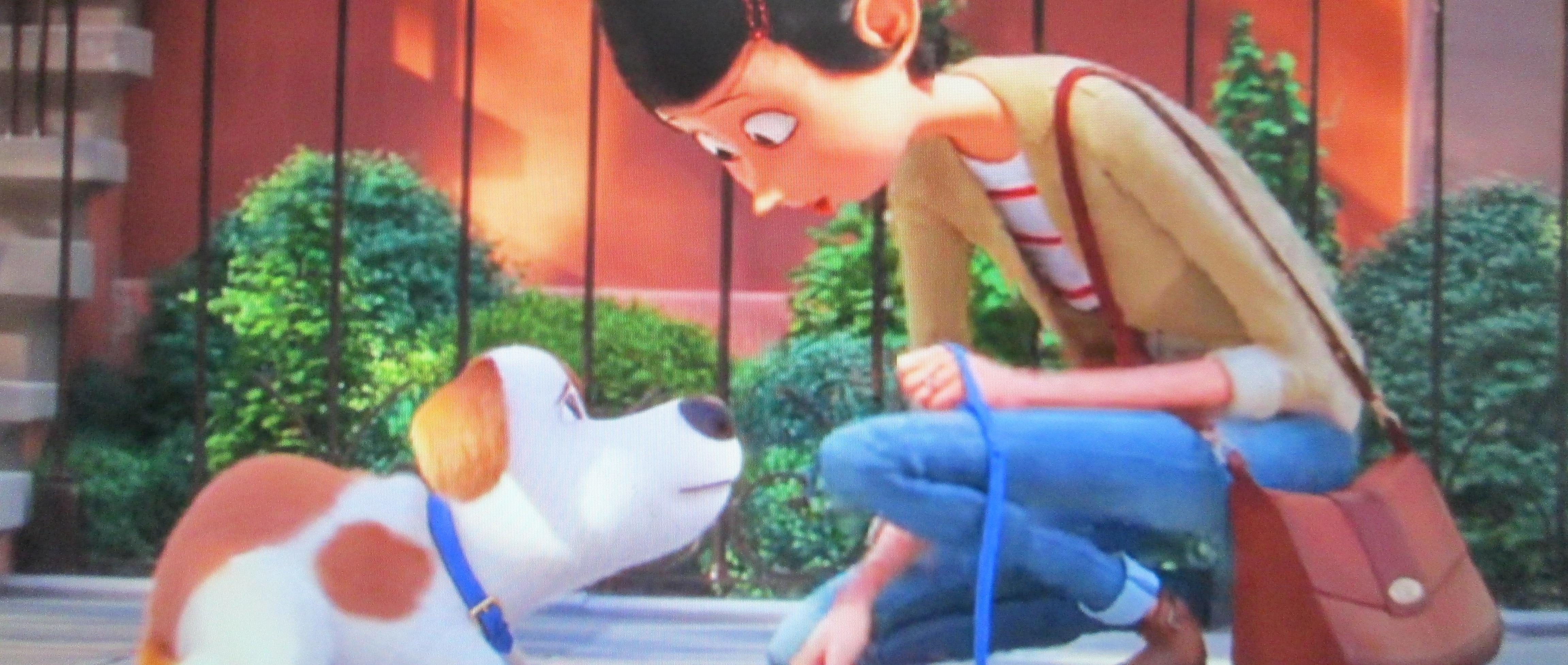 Pets 2 – Vita da animali: di nuovo al cinema Max e la sua banda