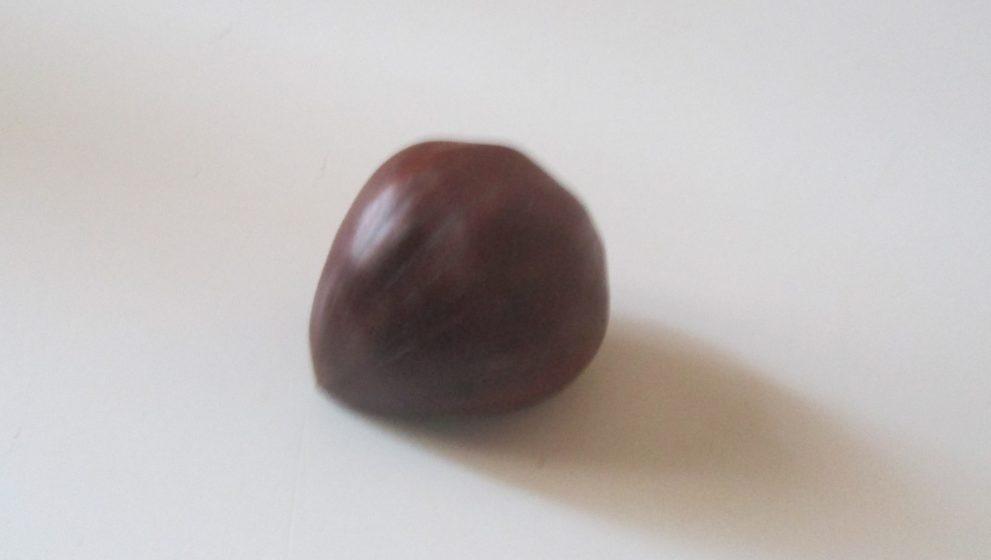 La castagna: un frutto autunnale, buono e nutriente, tipico italiano